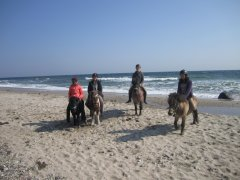 Reiten am Strand in Katharinenhof